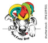 Dog In A April Fools' Hat....