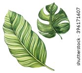 tropical leaves. watercolor... | Shutterstock . vector #396171607