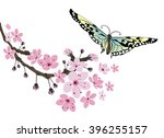 cherry blossom and butterfly.... | Shutterstock .eps vector #396255157