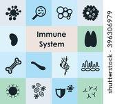 vector illustration   immune... | Shutterstock .eps vector #396306979