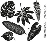 tropical plant leaves vector... | Shutterstock .eps vector #396407851
