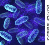 mitochondria   microbiology 3d... | Shutterstock . vector #396424405
