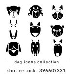 breed dog collection icon ... | Shutterstock .eps vector #396609331