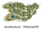 peacock feathers | Shutterstock .eps vector #396616699