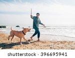 Stock photo man walking with labrador dog on beach 396695941