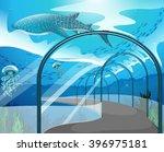 Aquarium Scene With Sea Animal...