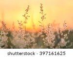grass grass flower background... | Shutterstock . vector #397161625