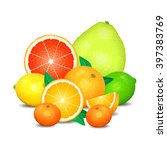 fruit of citrus  set of citrus... | Shutterstock .eps vector #397383769
