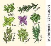 set of beautiful hand drawn... | Shutterstock .eps vector #397418701