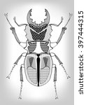 stag beetle  black and white... | Shutterstock .eps vector #397444315