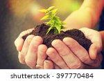 hand and plant | Shutterstock . vector #397770484