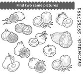 find two same pictures ... | Shutterstock .eps vector #397857991