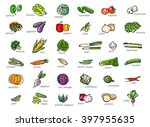 icon set of vegetables  hand... | Shutterstock .eps vector #397955635