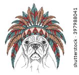 dog in the indian roach. indian ... | Shutterstock .eps vector #397988041