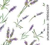 Lavender Flowers. Watercolor