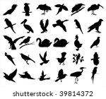 birds | Shutterstock .eps vector #39814372