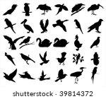 birds | Shutterstock .eps vector #39814372