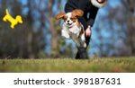 happy cavalier king charles... | Shutterstock . vector #398187631
