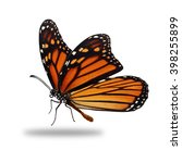 beautiful monarch butterfly... | Shutterstock . vector #398255899