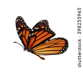 Stock photo beautiful monarch butterfly isolated on white background 398255965