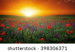 beautiful landscape with nice... | Shutterstock . vector #398306371