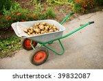 Wheelbarrow In A Garden Full Of ...