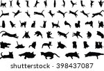 Stock vector cats 398437087