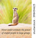 A Concept Picture Of A Meerkat...