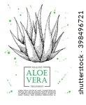 Vector Aloe Vera Hand Drawn...