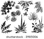 collection of vector leaf... | Shutterstock .eps vector #3985006
