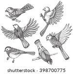 ste of hand drawn ornate birds. ... | Shutterstock .eps vector #398700775