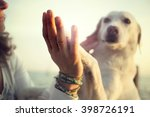 Stock photo dog s paw and man s hand gesture of friendship 398726191