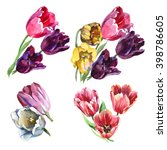 Design Set With Tulips Flowers...