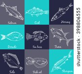 fish collection  dorado  fish... | Shutterstock .eps vector #398806555