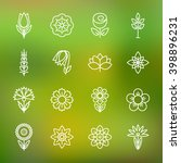 flower icons set. modern thin... | Shutterstock .eps vector #398896231