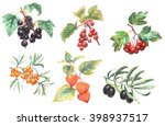 a set of realistic watercolor... | Shutterstock . vector #398937517