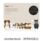 animal banner with dogs   ... | Shutterstock .eps vector #399042811