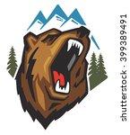 vector angry bear head on white ...   Shutterstock .eps vector #399389491