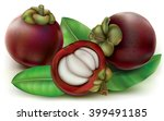 mangosteen fruits with fruit... | Shutterstock .eps vector #399491185