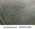 Elephant Skin Texture.