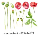 the element of red flowers... | Shutterstock . vector #399616771