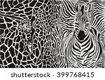 Background With Zebra And...