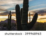 Saguaro In Sunset