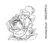 highly detailed hand drawn... | Shutterstock .eps vector #400109911