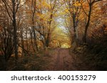 autumn forest. forest trail in... | Shutterstock . vector #400153279