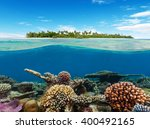 Underwater Coral Reef With...