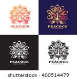 Illustration Peacock  Logo...