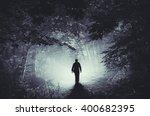 Surreal Light In Dark Forest...