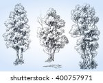 isolated trees set  hand drawn...