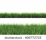 2 green grass isolated on white